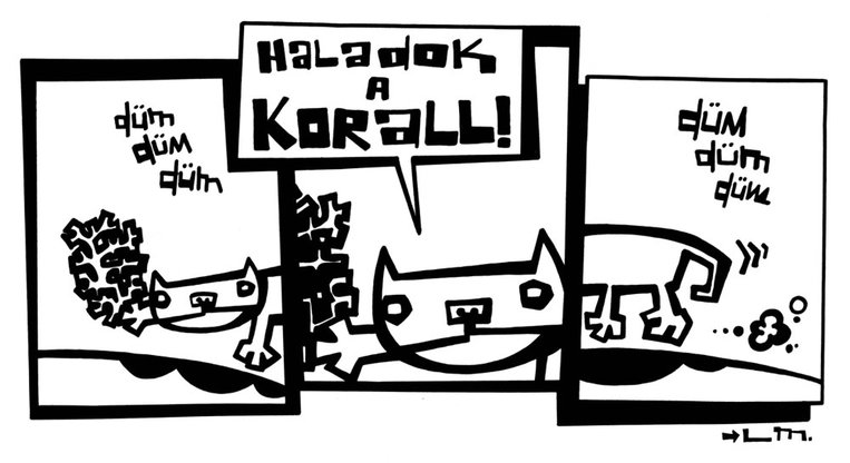 25_x_korall_strip.gallery